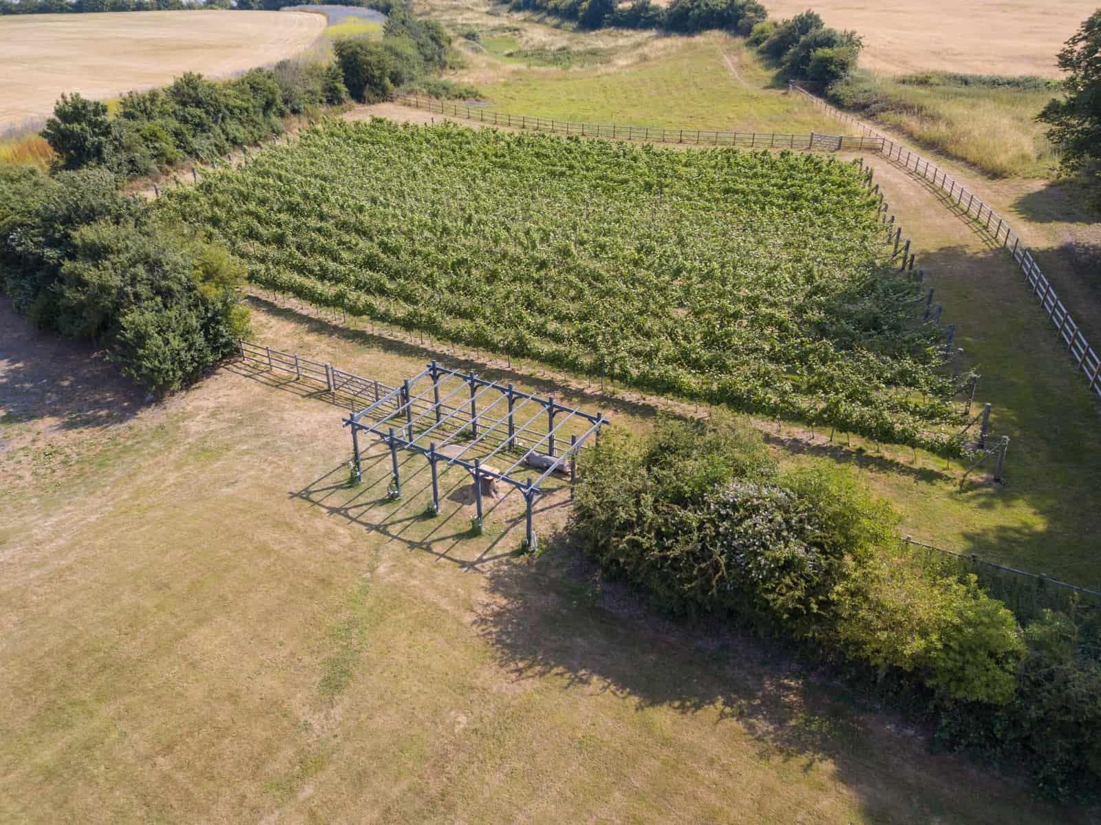 Aerial view pergola and Copdock Hall Vineyard