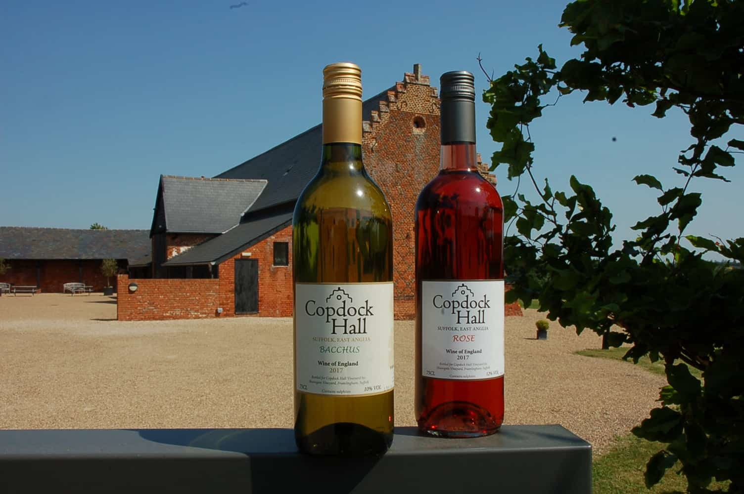 Copdock Hall new season wines