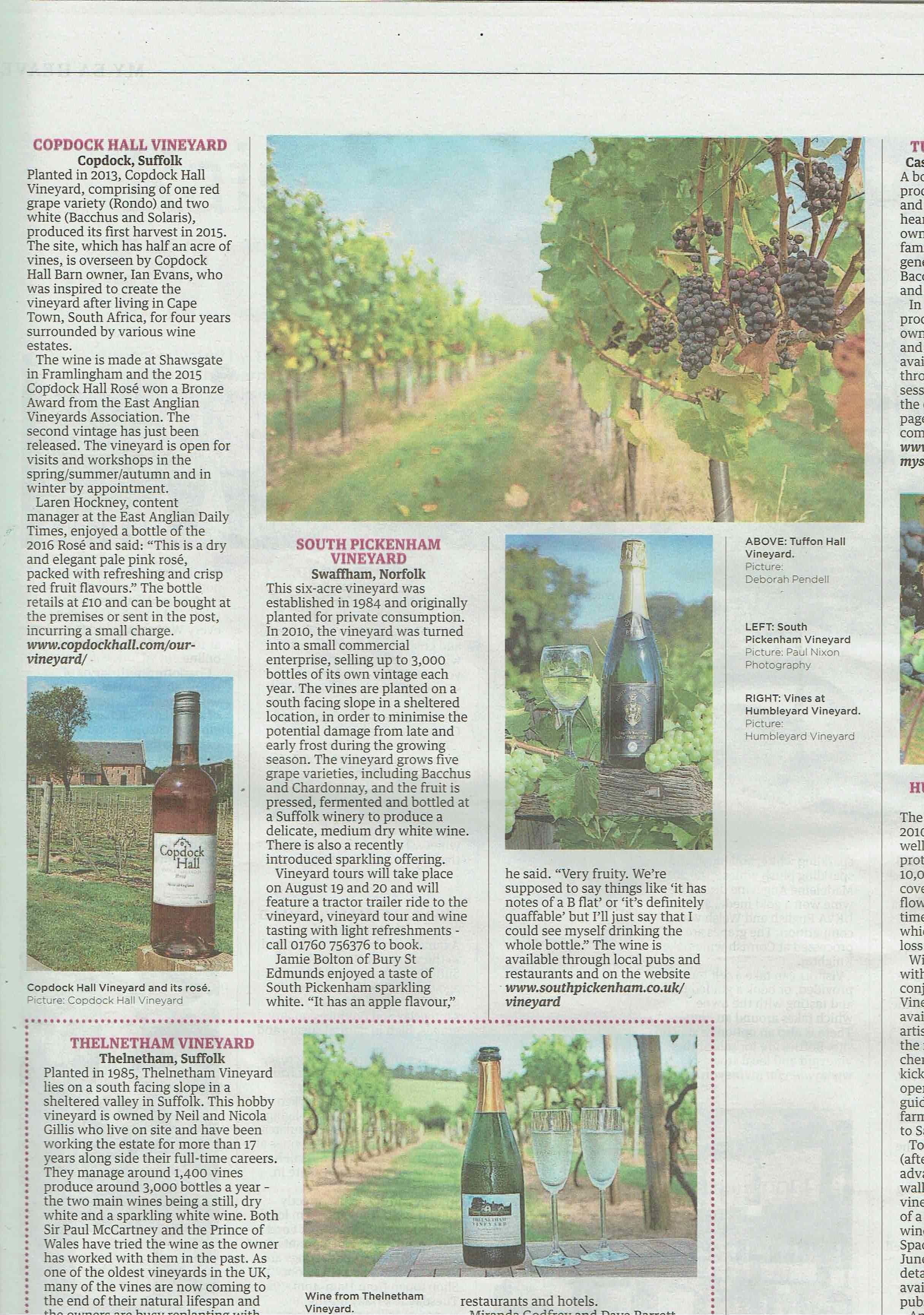 Copdock Hall Vineyard in EADT wine feature