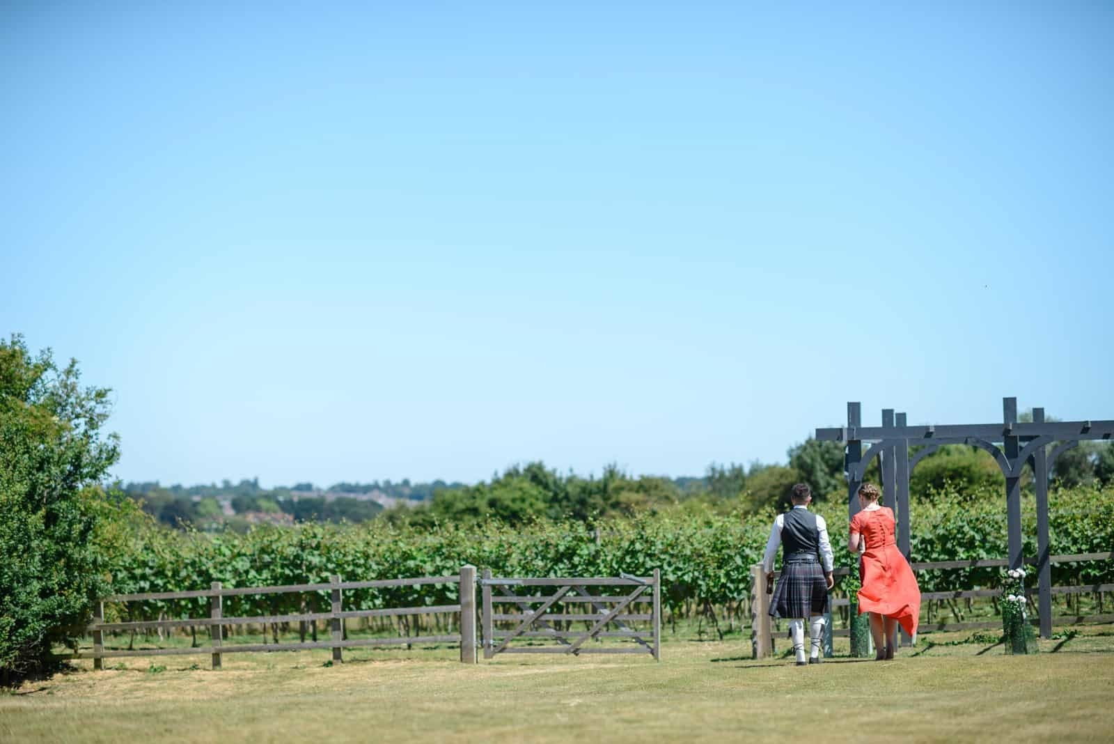 Andy Dane Photography - pergola and vineyard