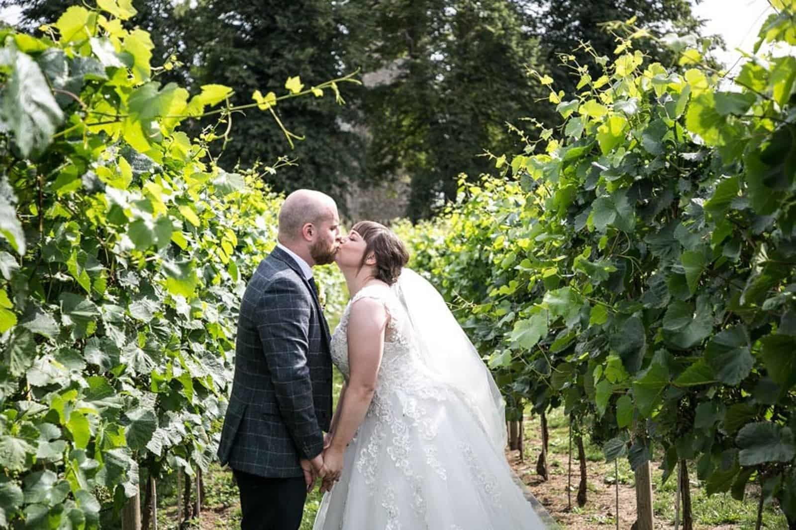Rebecca Prigmore photograpy - vineyard wedding shot